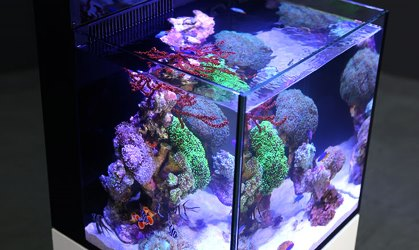 Аквариум Red Sea MAX NANO Complete Reef System